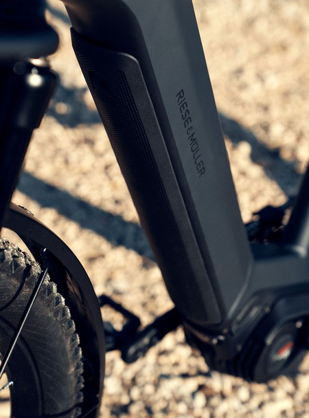 Charger 3 Riese & Muller eBike