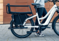 Multicharger Mixte E-Bike with back seat (Riese Müller)